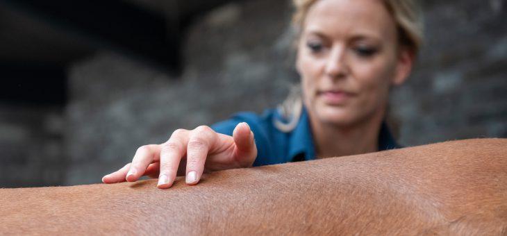 10 Tips om rugproblemen te voorkomen